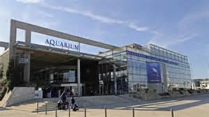 aquarium de la rochelle 233 pisode 2 de l incendie 224 la renaissance 3 poitou charentes