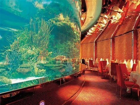 dubai underwater hotel just for dubai underwater and hotels