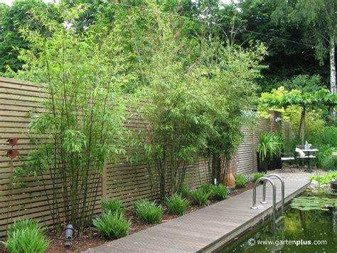 Schöne Sichtschutz Pflanzensichtschutz Pflanzen Garten