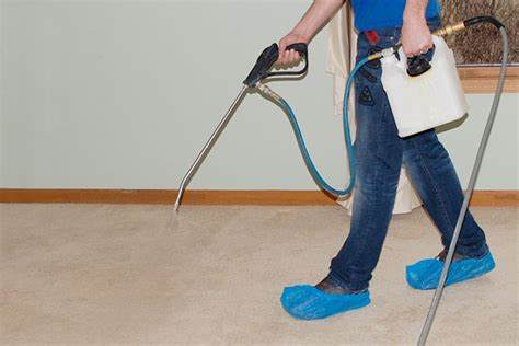 Promax Milwaukee  Professional Carpet Cleaning Services. Cosigning For A Student Loan. Chiropractic Superbill Template. Graduate Certificate In Mathematics. Pay For Performance Search Engine Optimization. Low Residency Mfa Photography. How Much Are Retainers After Braces. Personal Injury Lawyers Pittsburgh. Atlanta Technical College Programs