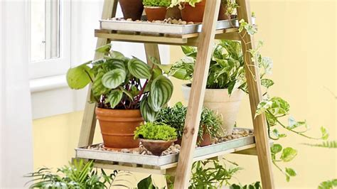 9 Tools That Make Indoor Gardening Ridiculously Easy