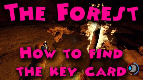 Yacht Keycard by The Forest How To Find The Key Card Youtube