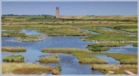 Schouw En Duiveland by Inlagen Op Schouwen Duiveland Zeeland Op Foto