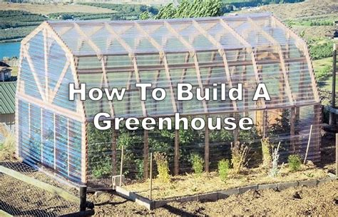 How To Build A Greenhouse  Off Grid World