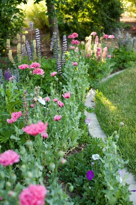Cottage Garden Border With Concrete Mowing Strip Garden