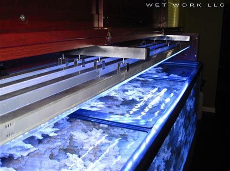 led aquarium lighting orphek september 2011
