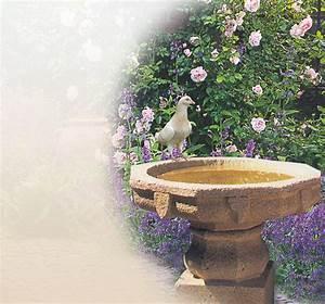 Bilder Für Den Garten : vogelbad aus stein f r den garten kaufen vogelb der online steinguss granit sandstein ~ Markanthonyermac.com Haus und Dekorationen
