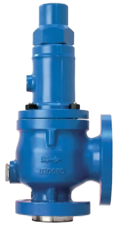 Safety Relief Valves  Wpe Process Equipment