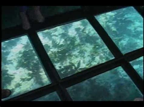 Youtube Film The Glass Bottom Boat by Glass Bottom Boats In Key Largo Youtube