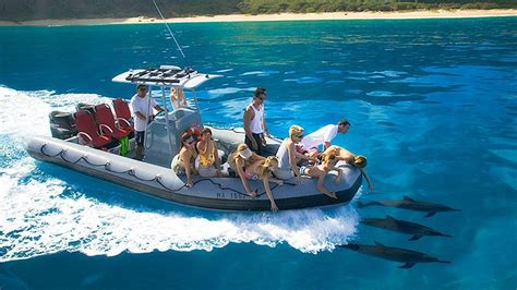 Zodiac Boat Maui by Zodiac Being Escorted By Spinner Dophin Pod Captain Andy S