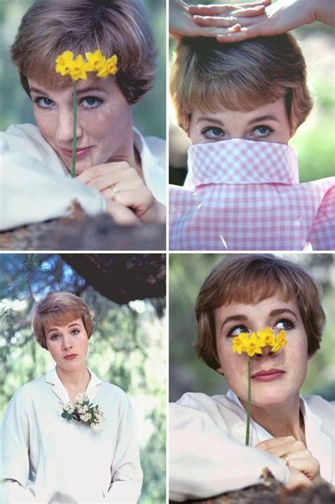 Julie Andrews  Practically Perfect In Every Way