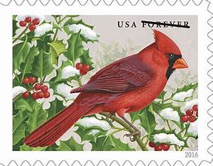 New songbirds stamps feature N.C. state bird, the cardinal ...
