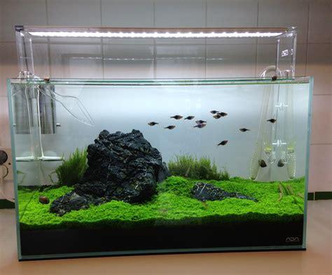 aquarium ada 60 p 60 litres