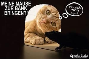 Bild Mit Spruch : niedrigzinsen lustiger spruch mit katze und maus spr che suche ~ Markanthonyermac.com Haus und Dekorationen