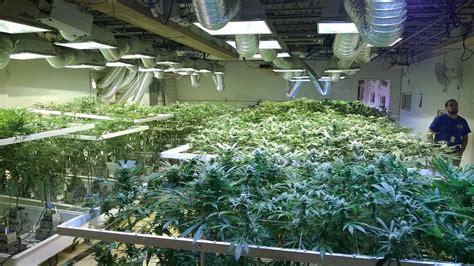 sur la route de la l 233 galisation voyage 224 denver jour 2 bloc pot l 233 galisation du cannabis