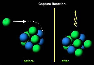 ORNL Physics Division - Capture Reactions