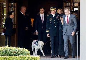 'Mission complete:' Bush 41's service dog will be by Bush ...
