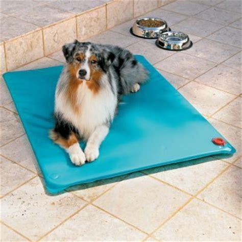 un tapis rafraichissant pour chien club chien chat tous extras