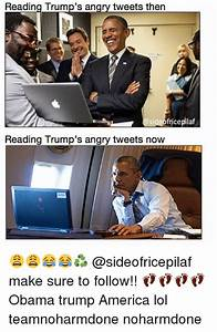 Reading Trump's an Tweets Then Fricepilaf Side Reading ...
