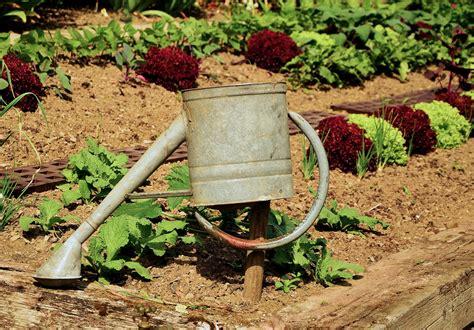 l arrosage 233 conome en eau jardiner autrement
