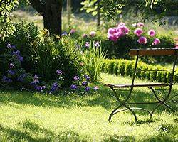 Stauden Für Den Schattigen Garten : stauden f r den garten sonniger halbschattiger standort gartengestaltung ~ Markanthonyermac.com Haus und Dekorationen