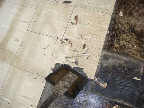 asbestos floor tile removal flickr photo