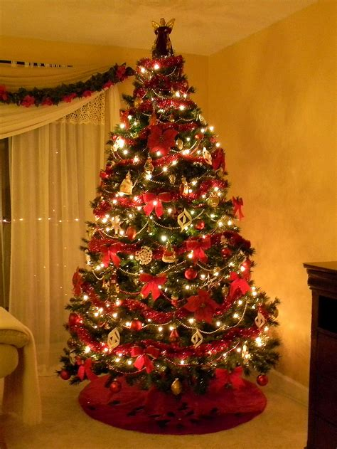 Best Christmas Trees  Happy Holidays