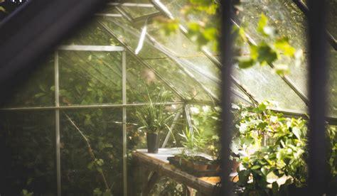 Serre Per Giardino by Serre Da Giardino Come Far Sopravvivere Fiori E Piante