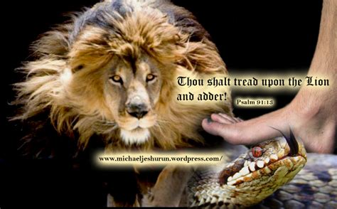 Thou Shalt Tread Upon The Lion And Adder