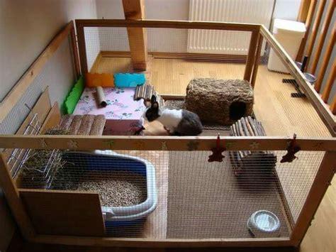les 25 meilleures id 233 es de la cat 233 gorie enclos lapin sur parc pour lapin parc lapin
