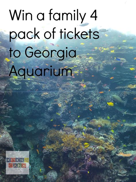 win tickets to aquarium for a family of 4 mojo