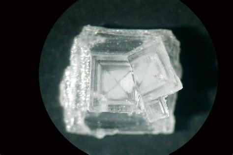 fabrication de cristaux de sel g 233 odiversit 233 net