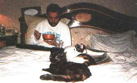 freddie mercury and cats bloger