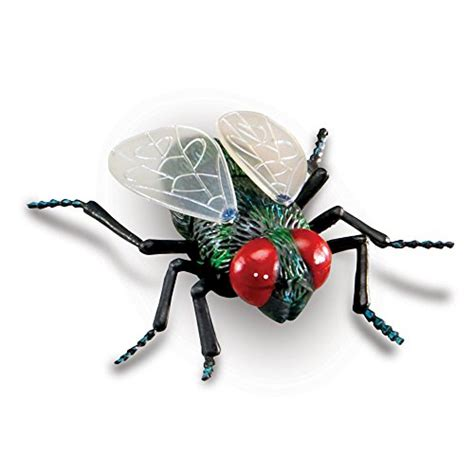 Learning Resources Jumbo Insects, 7insects  Import It All