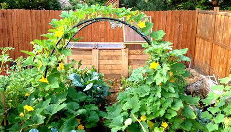 Flower Garden Ideas And Designs Designing A Layout Plans