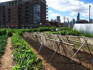Urban agriculture - Wikipedia