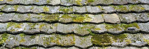 Is Moss On Roof Tiles A Problem Roofing Contractors Nj Guy Brothers Pensacola Reviews What Does A Square Of Cover Sears Roof Rack Key Copper Bay Window Leak Metal Orange County Ca Snap Lock Insulated Panels Soprema Fasteners