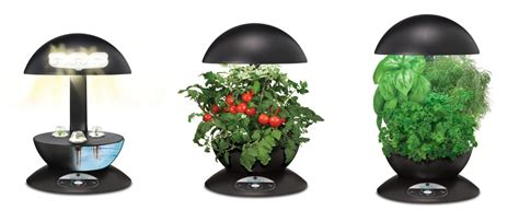 Pod Indoor Garden (with Gourmet Herb Seed Kit