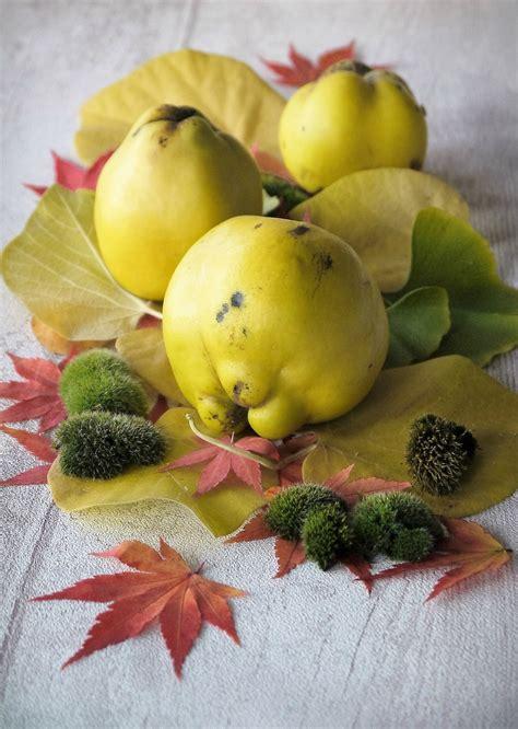 p 226 tes de fruits et gel 233 e de coings recette 2 en 1 au thermomix ou robot cuiseur les recettes