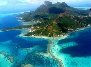 Avis sur la Plongée en Polynésie | Les Meilleurs Destinations