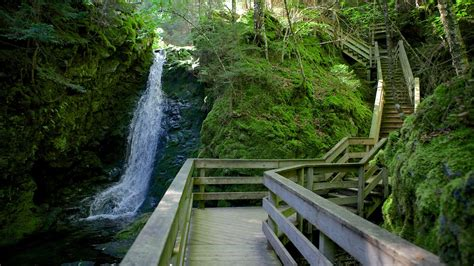 Tile Deals by Fundy National Park In Alma New Brunswick Expedia