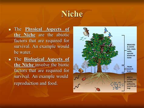 Niche & Community Interactions
