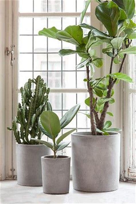 25 best ideas about concrete pots on concrete planters cement planters and diy