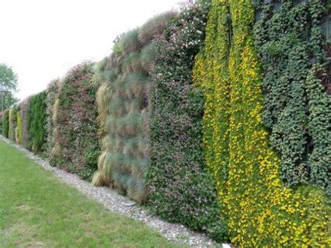 vegetalisation mur autoporteur brise vue liaison v 233 g 233 tale