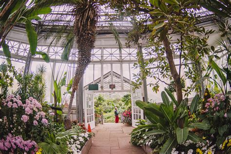 allan gardens toronto escaping the concrete jungle green spaces in canada s