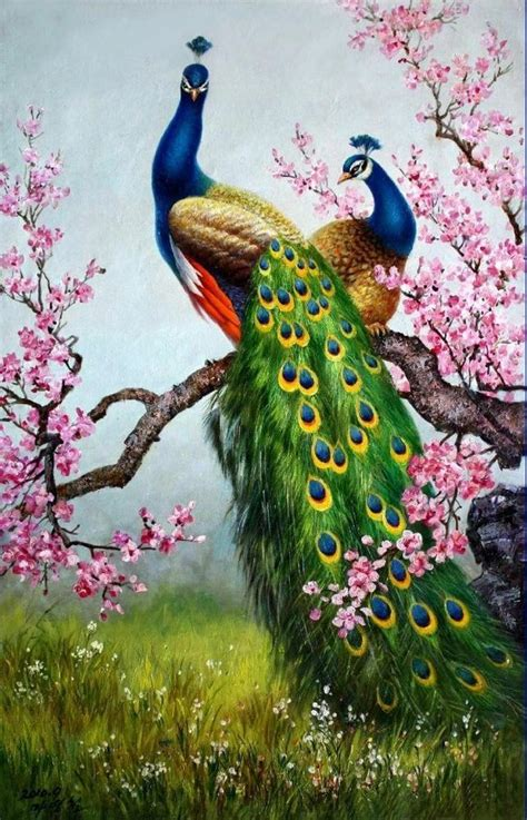 1000 ideas about peacock painting on peacock
