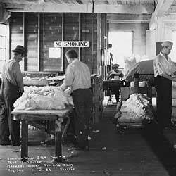 Federal Emergency Relief Administration (FERA) Collection
