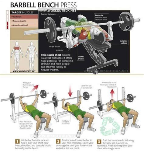 Technique For Bench Press Barbell Bench Press Chest