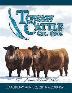 Towaw Cattle Co 37th Annual Bull Sale by Bohrson Marketing ...