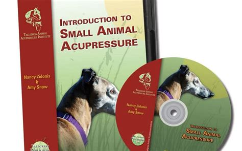Animal Wellness Guide  Holistic Health For Animals